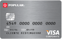 card image - Visa Corporate Card
